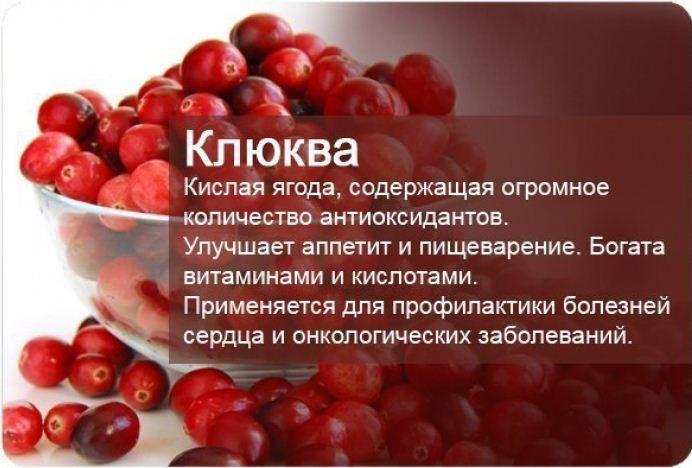 klyukva-pri-pankreatite1