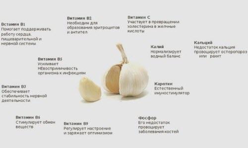 Диета Кима Протасова подробное описание меню и отзывы