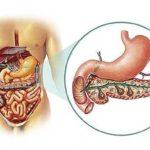 Інсулін і гормони, що виробляються підшлунковою залозою