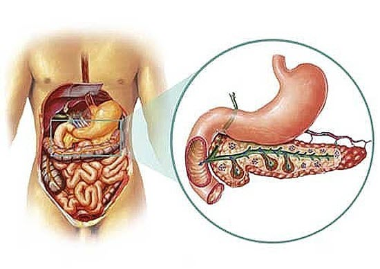 Folk remedies for the treatment of pancreatic cancer