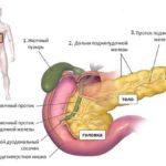 Паразити в підшлунковій залозі: симптоми і лікування