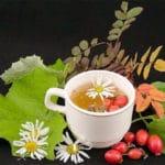Фітотерапія при панкреатиті: огляд рецептів