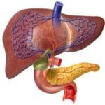 Причини і симптоми захворювання жовчного міхура та підшлункової залози