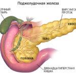 Як відновити підшлункову залозу при цукровому діабеті