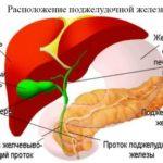 Підшлункова залоза профілактика захворювання